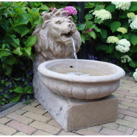 Basel leijonanpää vesiaihe