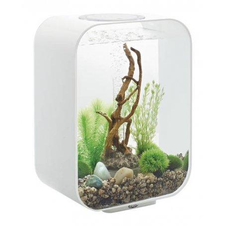 biOrb akvaario sisustusakvaario koristeakvaario
