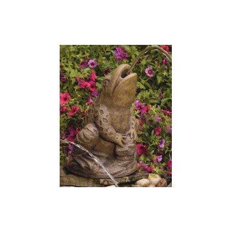 Sammakkopatsas - Spitting Frog