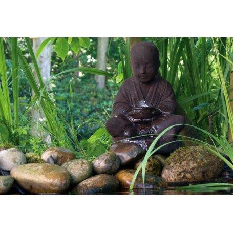 Buddha suihkukaivo, vesiaihe