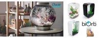 OASE:n biOrd akvaario on upea sisustusakvaario, eli helppokäyttöinen koristeakvaario kotin ja toimistoon